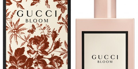 Gucci Bloom Pack Shot - AED 570 - 100ML